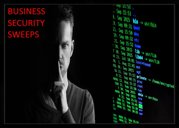 Business Security Sweeps